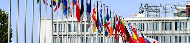 Área de Internacionalización